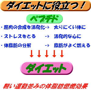 大豆ペプチド ダイエット